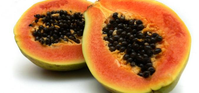 La Papaya: il frutto dell'eterna giovinezza