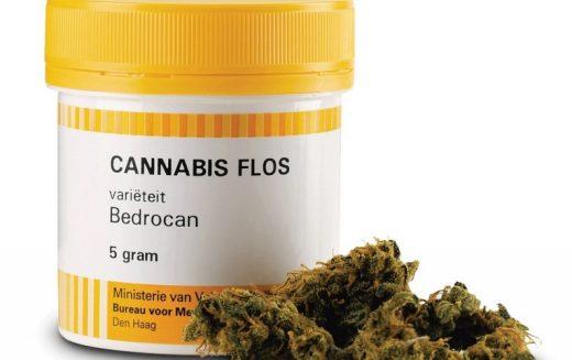 Cannabis in farmacia, tutto ciò che c'è da sapere